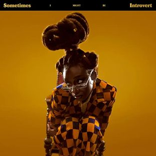 Little Simz - <br> Introvert