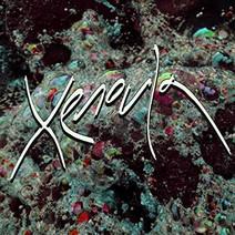 Xenoula - Luna Man