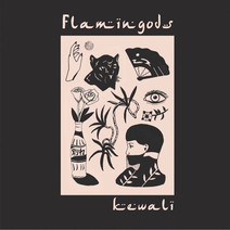 Flamingods - Mixed Blessings