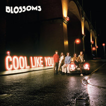 Blossoms - Cool Like You