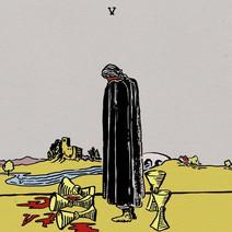 Cover: Wavves - V